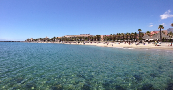 Playa del Camisón, Arona